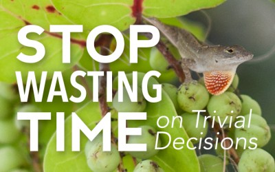 Stop Wasting Time On Trivial Decisions