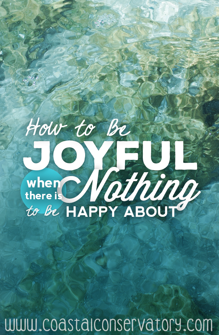 how to be joyful when theres nothing 2