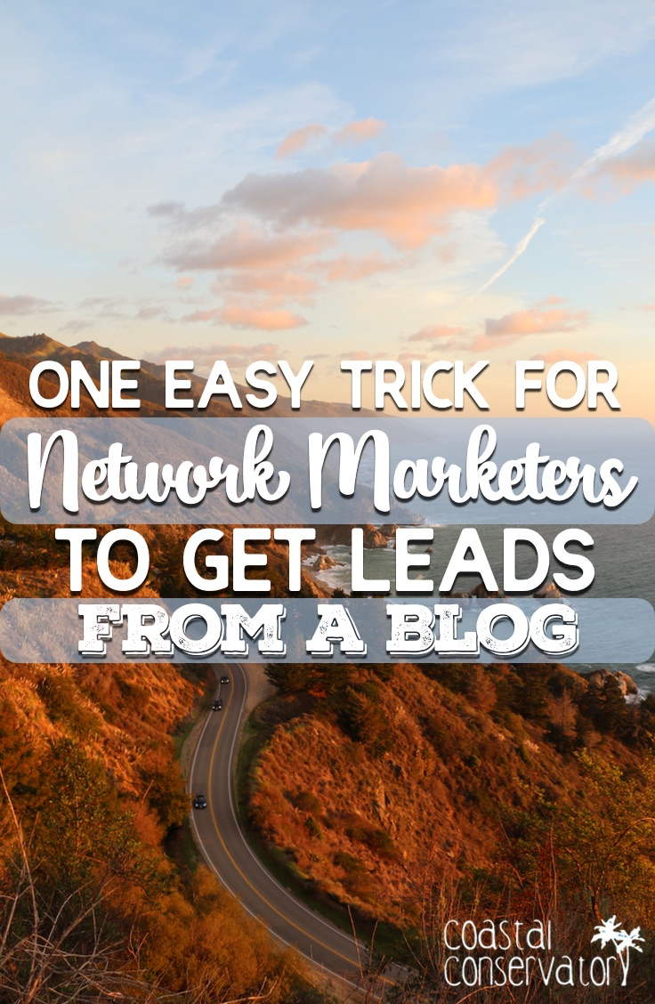 Get Leads From A Blog