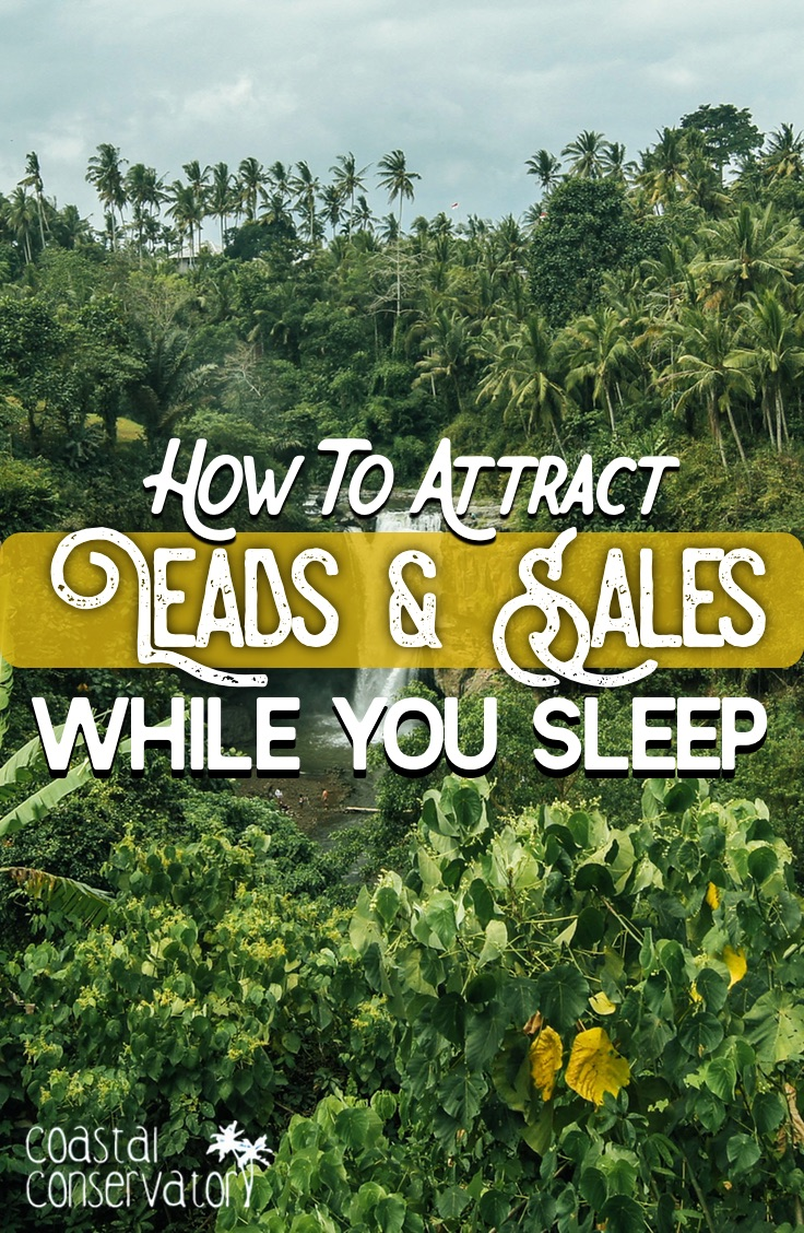 Attract Leads and Sales