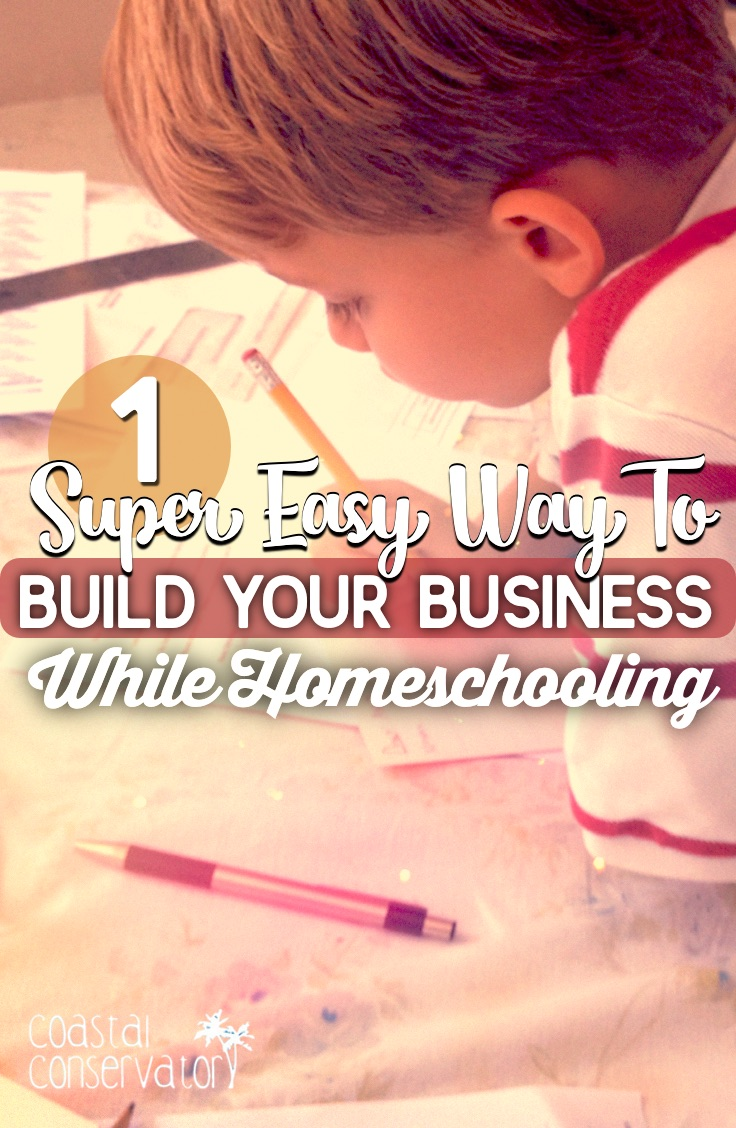Build Your Business While Homeschooling