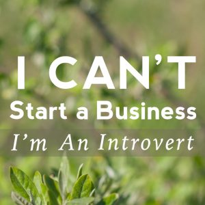 I Can't Start A Business; I'm An Introvert